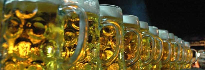 Belgrade Beer Fest, EXIT, Guča
